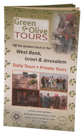 green olive tours israel palestine alternative tours culture