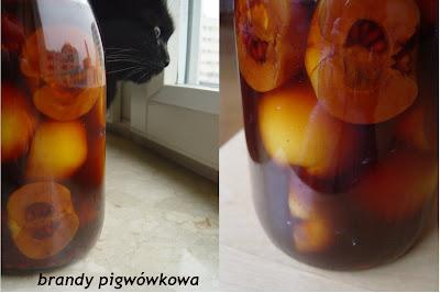 Korzenna brandy pigwówkowa