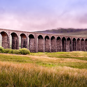 24 Arches, 400 Meters Long-Ripplehead, UK by Donna Brittain - Buildings & Architecture Bridges & Suspended Structures ( uk, purple, viaduct, yellow, landscape, fog, yorkshire, color, arches, ripplehead, the dales, bridge, trains,  )
