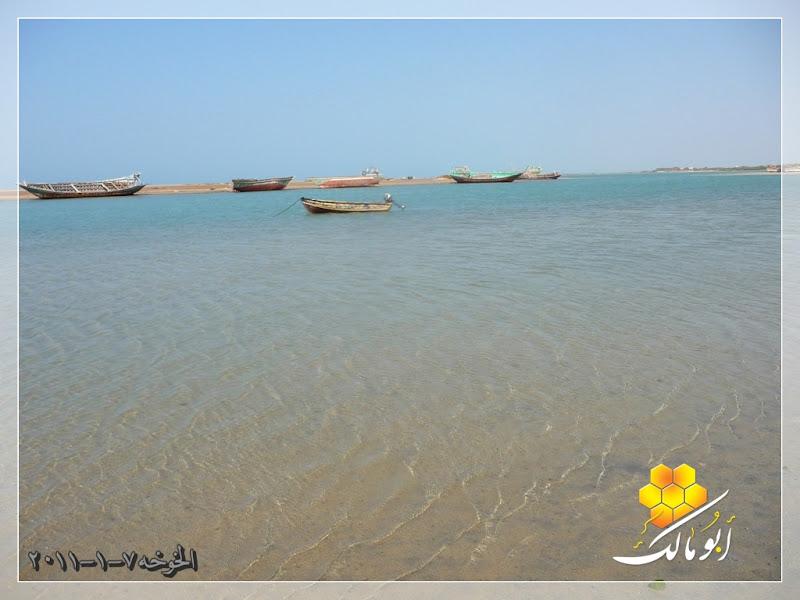 مكان جديد من اليمن السعيد . . . الخوخه 107.JPG