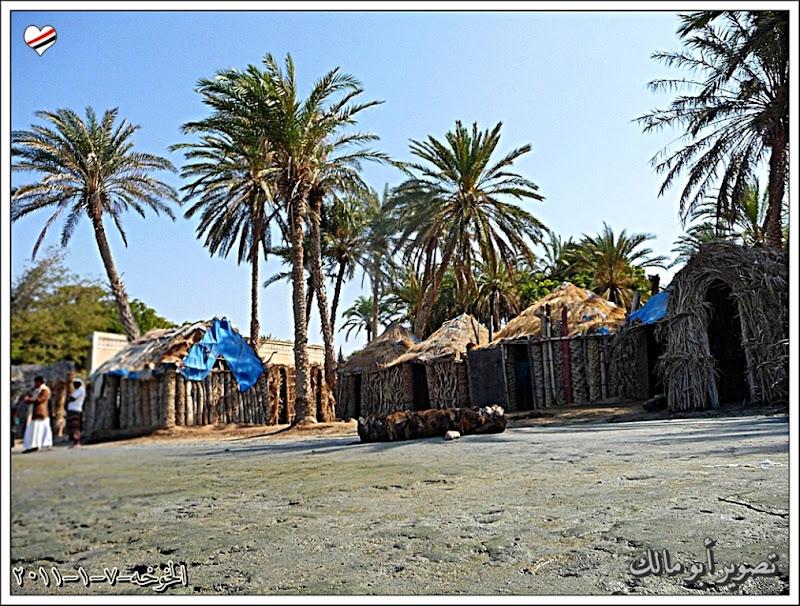 مكان جديد من اليمن السعيد . . . الخوخه P1320143.jpg