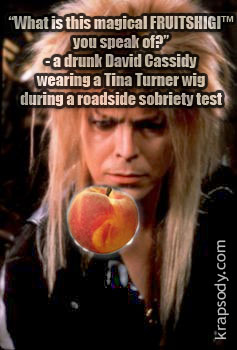 David Bowie and David Cassidy love FRUITSHIGI and COCAINE!!!