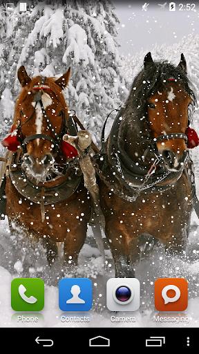【免費個人化App】Horses Live Wallpaper-APP點子