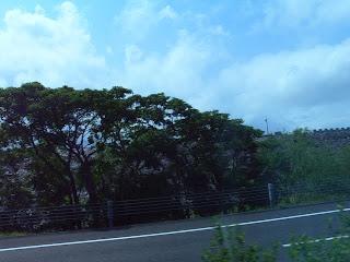 沖縄自動車道より下流側堤体を望む(その4)