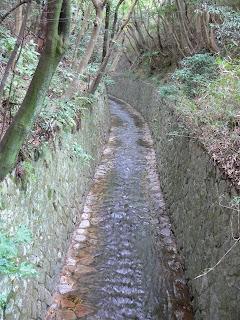 放水路を望む