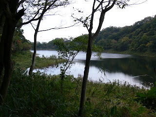 ダム湖を望む