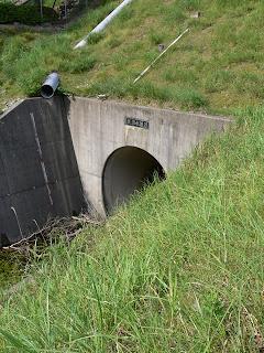 ん?トンネル??