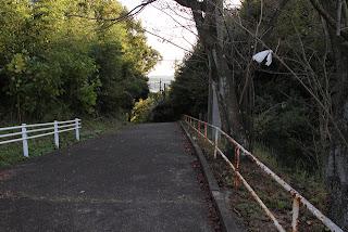 導流部脇の管理道路(?)