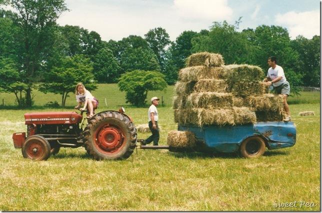 Making Hay1