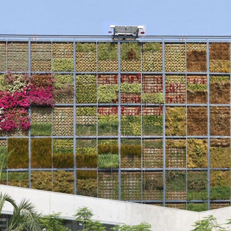 Vertical Garden in San Vicente