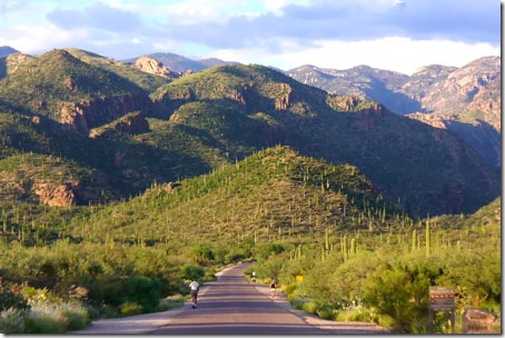 Sabino Canyon and Santa Catalina Mountains