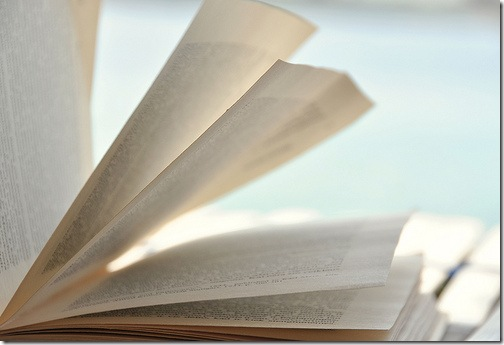 breezy book by flickr