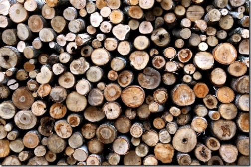 The Lisa Porter Collection : The Wood Pile