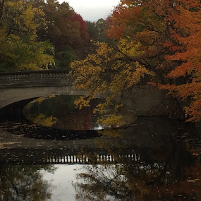 Bridge in autumn by Karen Jaffer - Instagram & Mobile iPhone