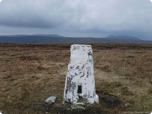 middle tongue trig point
