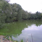 Nouvel Etang photo #33