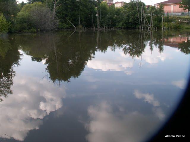 Le noyer photo #38