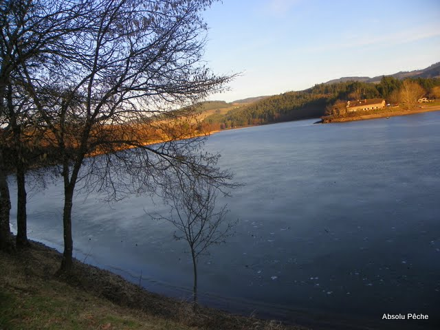 Lac des sapins à Cublize photo #224