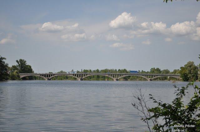 Loire en Amont du pont de Feurs photo #301
