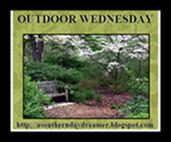 OutdoorWednesdaylogo54544444_thumb24