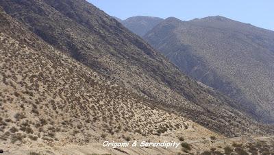 Postales de Mendoza, Argentina, Elisa N, Blog de Viajes, Lifestyle, Travel