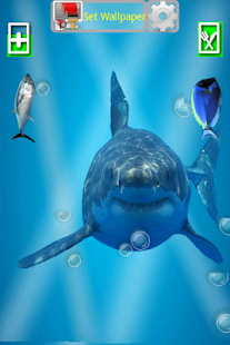 Angry Shark Pet Cracks Screen - screenshot thumbnail