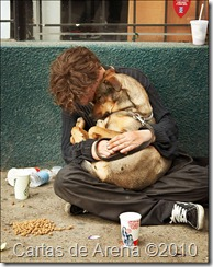 homeless-dog