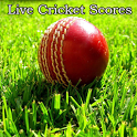 Cricket Fever 2013 icon