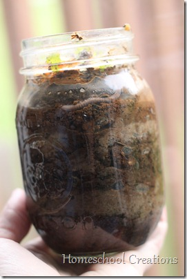worm jar 2