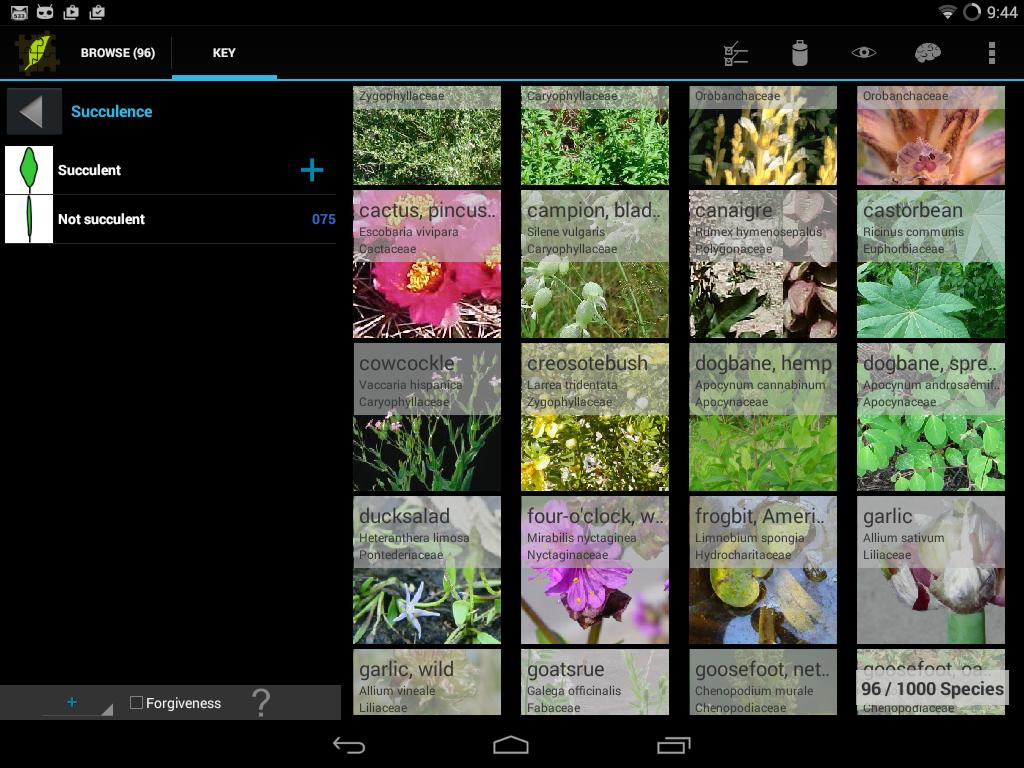 1,000 Weeds of North America - screenshot