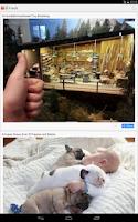 Screenshot of Funny Pics & Jokes - FunnyCoCo