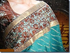 Costly Designer Saree