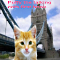 Talking cat Puffy's first book logo