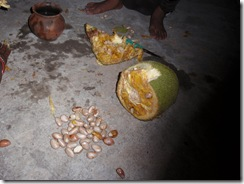 Jackfruit preparation 2