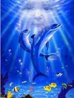 Delfíny ZGLy-126.jpg