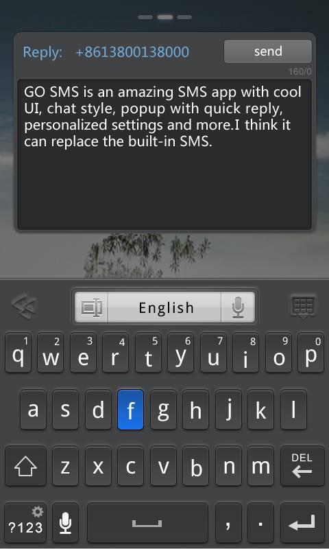 GO SMS Pro Widget- screenshot