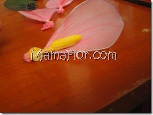 mamaflor-5392