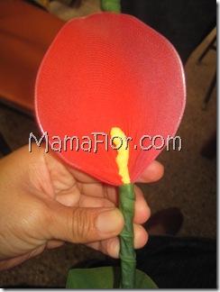 mamaflor-5397