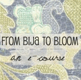 from bija to bloom :: emily perry