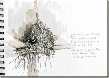 big nest sm