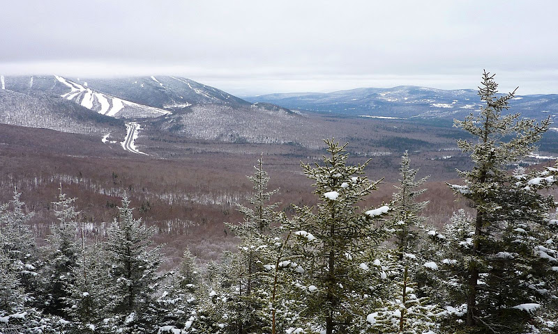 No Visitors Since May 2008? (Scarface Mountain, NH: 18-Feb-2010)