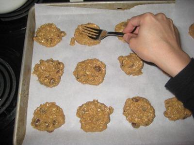 cookie 024