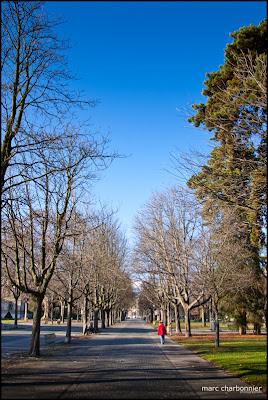 Le parc des bastions au coeur de la ville de Genève
