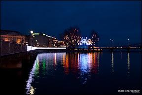 arbres et lumières 2010  - ile rousseau-1.jpg