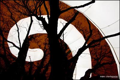 arbres et lumières 2010  - la ligne-1.jpg