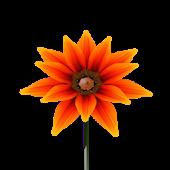 Onix Flowers. Summer.
