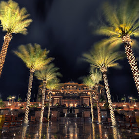 Swaying by CJ Cantos - City,  Street & Park  Night ( night photography, color, colors, trees, abu dhabi, night, night shot )
