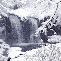 Winter Waterfall LiveWallpaper
