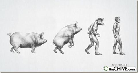 [cosasdivertidas evolución (1)[3].png]