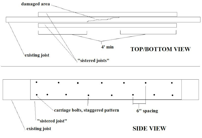 Termite Damage Sistering Floor Joists Termite Damage